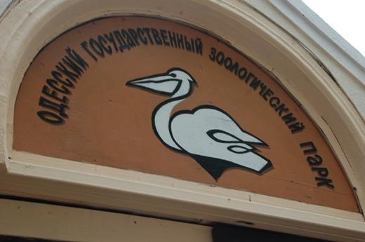 Одесский зоопарк приглашает к себе ночью посетителей на Хэллоуин «фото»