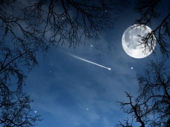 Любителей ночного неба ждет приятное зрелище «фото»