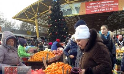 Елка на Привозе утопает в горках мандаринов (фото) «фото»