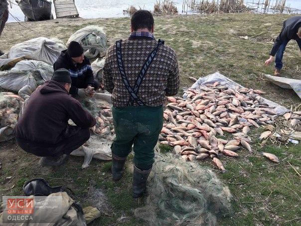 Измаильские рыбаки помогли поймать браконьеров, уничтоживших тонну рыбы (фото) «фото»