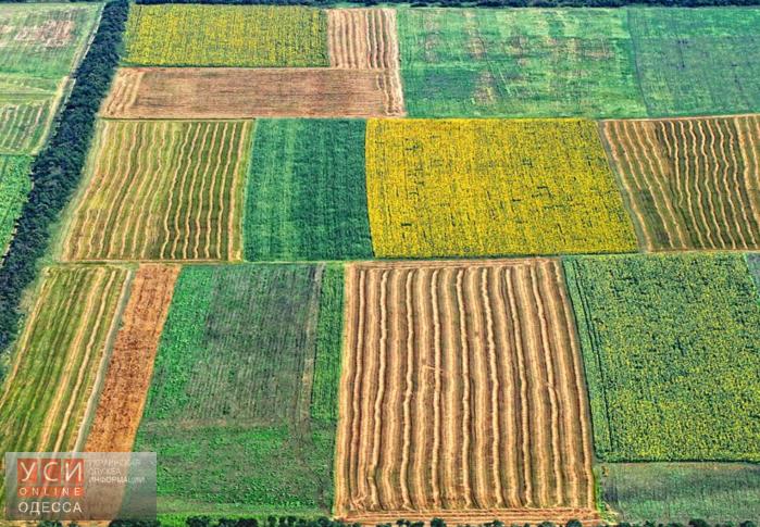 Одесским аграриям не хватает земли «фото»