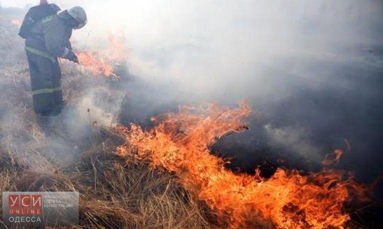 Спасатели потушили крупный пожар в Одесской области «фото»