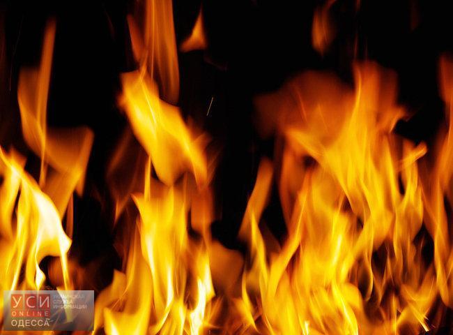 В Одесской области из-за короткого замыкания сгорел микроавтобус