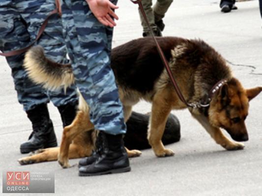 В Хозяйственном суде на проспекте Шевченко ищут бомбу (обновлено) «фото»