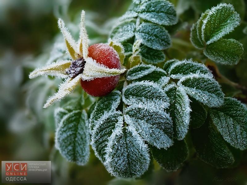 ВАзербайджанской столице прогнозируют дожди, врайонах— снег