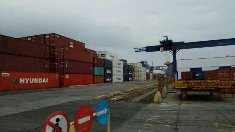 Через одесский порт вЕвропу пытались нелегально вывезти леса на10 млн.