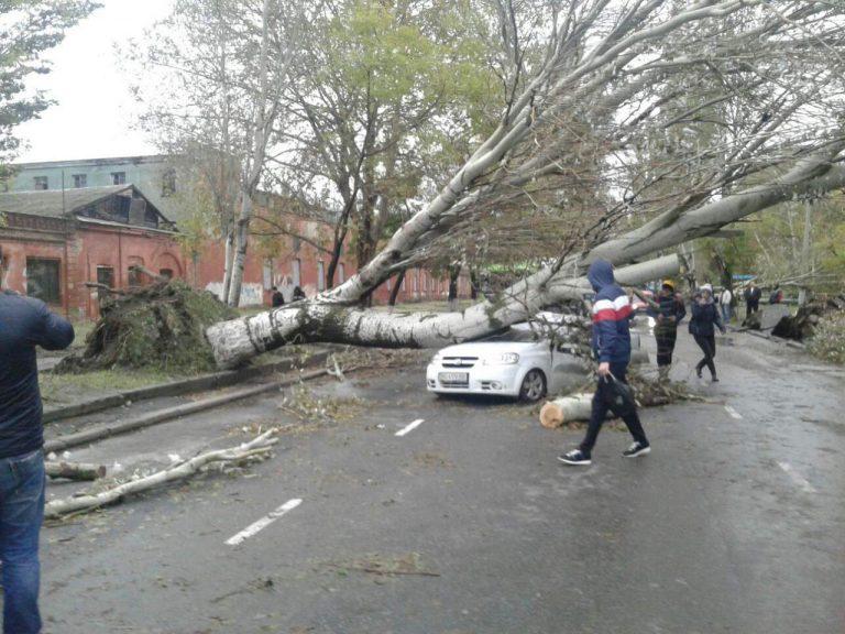 В Одессе массово падают деревья и билборды