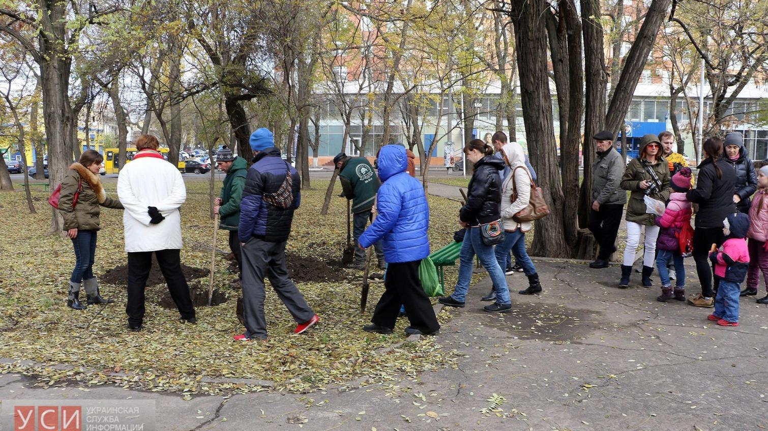 В Одессе появилась «Аллея мира»: переселенцы высадили в городе новые деревья (фоторепортаж) «фото»