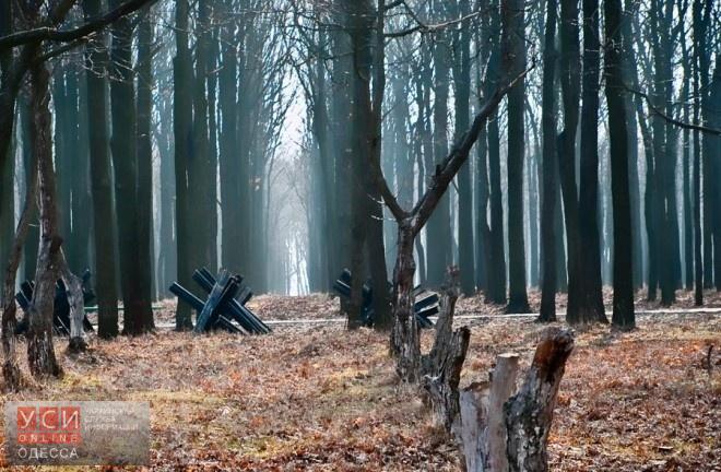 В Одессе утвердили границы Мемориала 411-й батареи «фото»