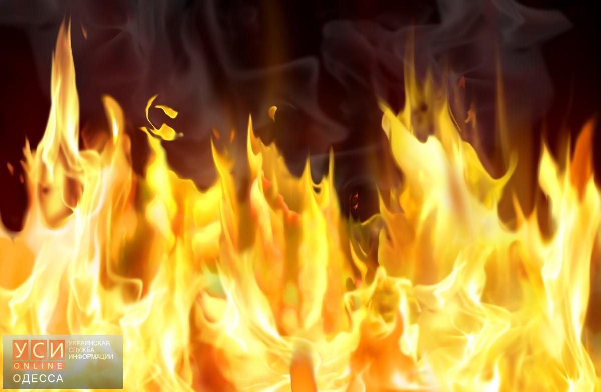 Засутки напожарах вОдесской области погибли три человека