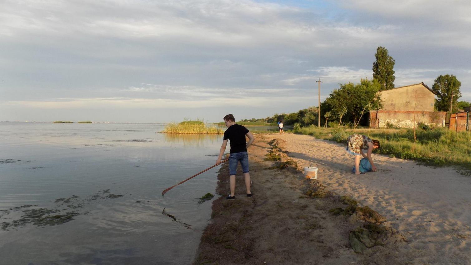 В Шабо люди собственными усилиями расчищают побережье лимана (фото) «фото»