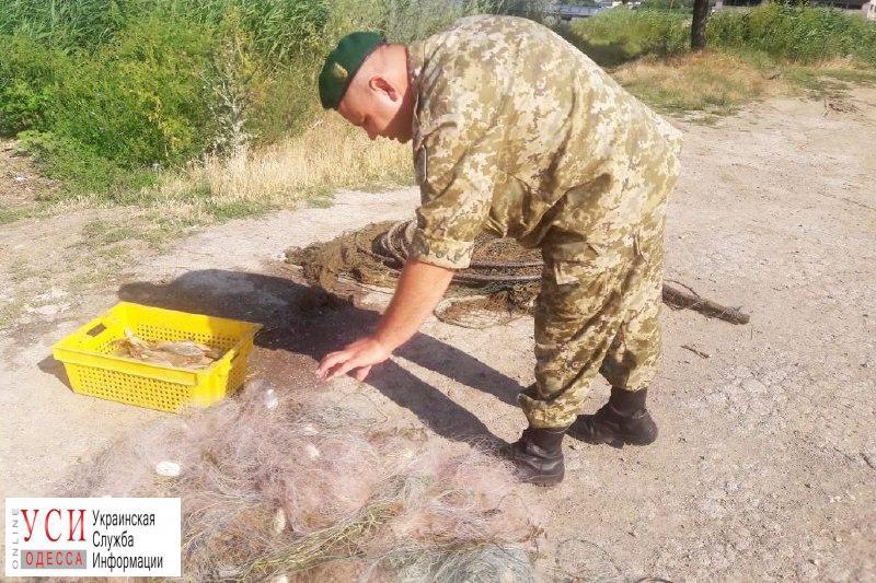 Одесские пограничники задержали браконьеров (фото) «фото»