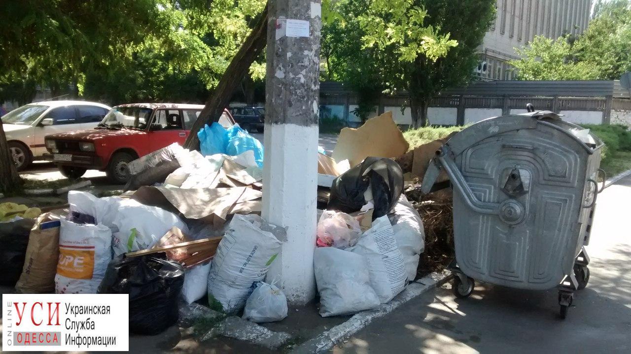 Экскурсия по мусоркам на поселке Котовского (фото) «фото»