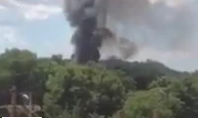 В Овидиопольском районе горела база отдыха (видео) «фото»