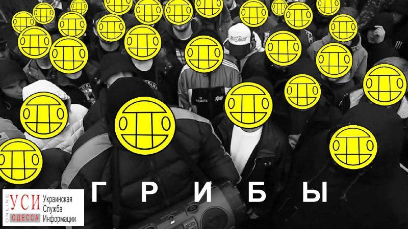 Стерненко передумал протестовать против «Грибов», но «простил их в последний раз» «фото»