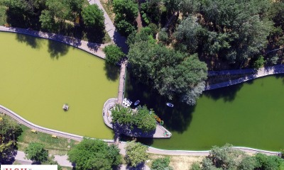 Особенности одесских прудов: грязная вода и зеленые водоросли (фоторепортаж) «фото»