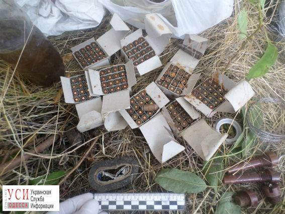 В Одесской области обнаружили брошенную сумку с боеприпасами «фото»