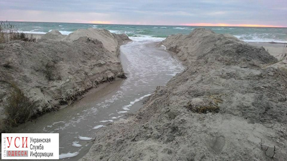 Одесские экологи вручную соединили лиман с морем ради спасения рыбы (фото) «фото»