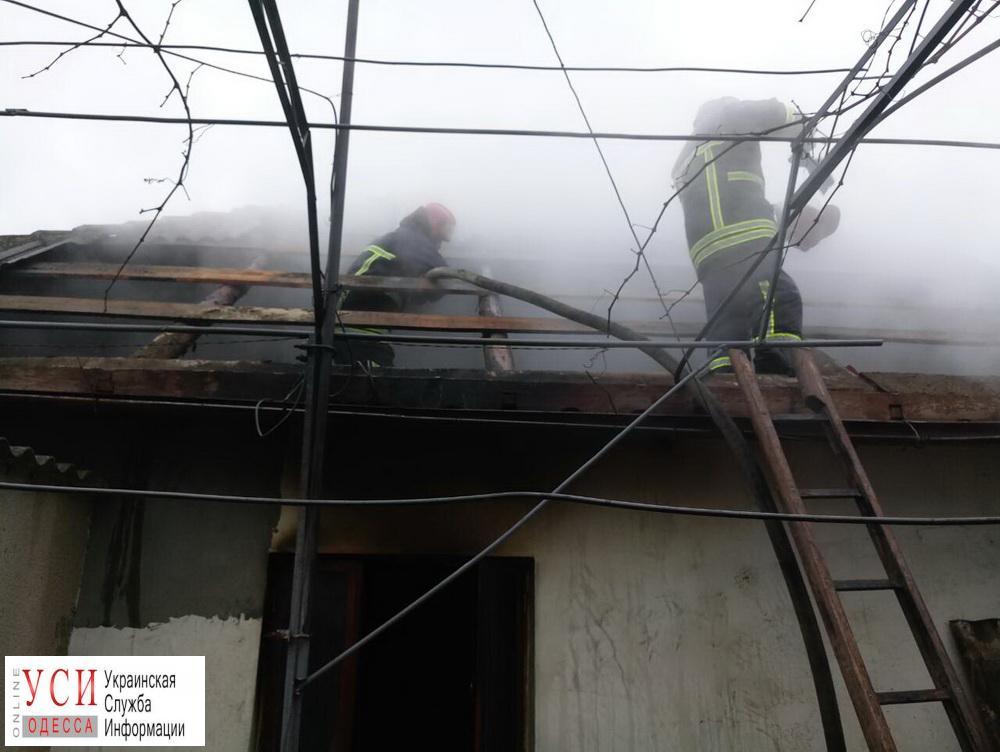В Рени потушили масштабный пожар (фото) «фото»