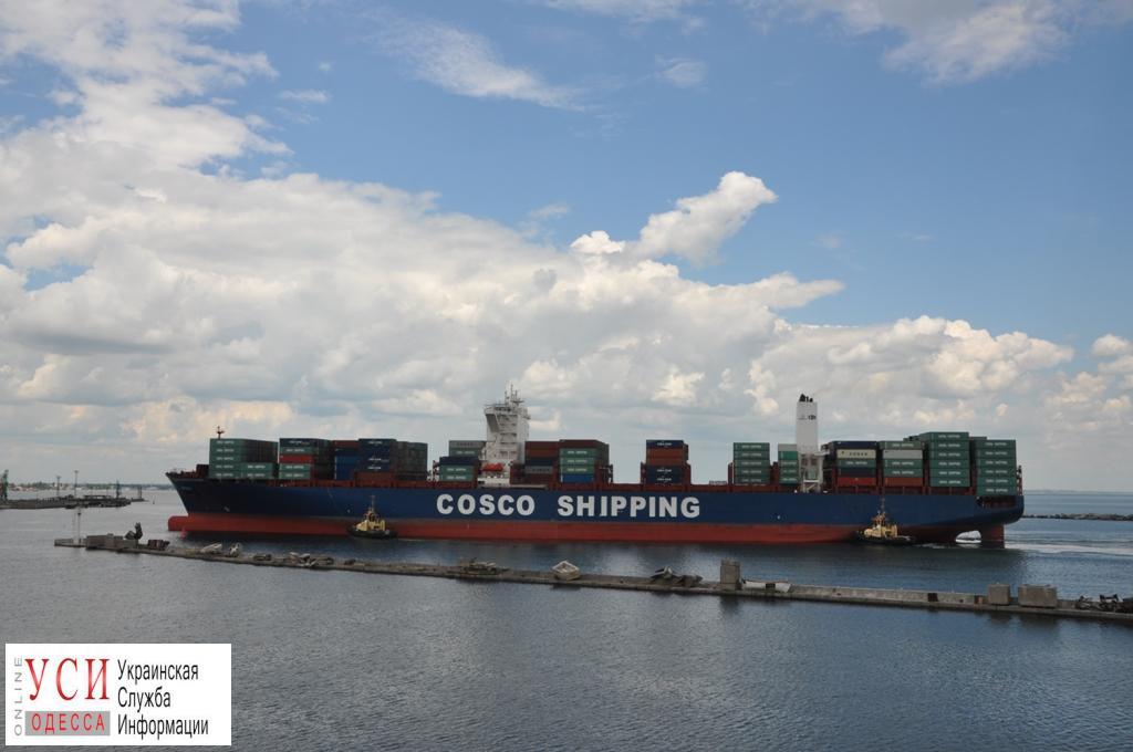Одесский порт принял три огромных контейнеровоза (фото) «фото»