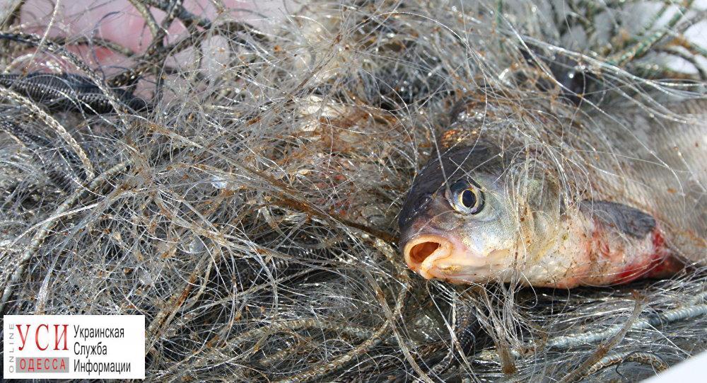 На Хаджибейском лимане поймали браконьера, который нанес ущерб государству на полтора миллиона гривен «фото»