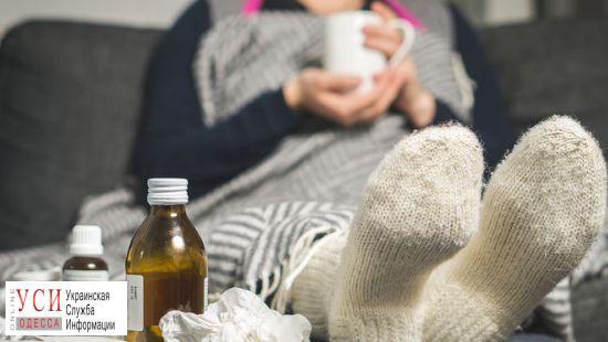 В регионе вырос уровень заболеваемости гриппом, но эпидемии еще нет «фото»