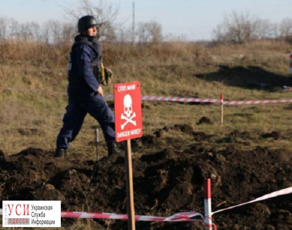 В Тарутинском районе обнаружили 38 боеприпасов «фото»