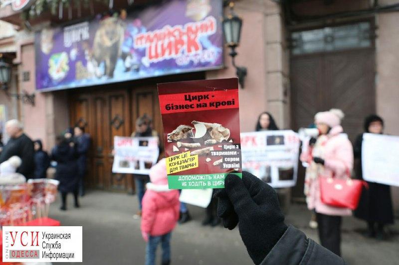 Под Одесским цирком призывали не использовать животных для развлечения (фото) «фото»