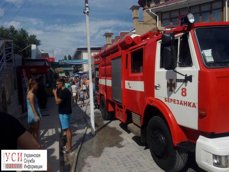 Одесские спасатели тушили пожар в Коблево: пострадала женщина (фото) «фото»