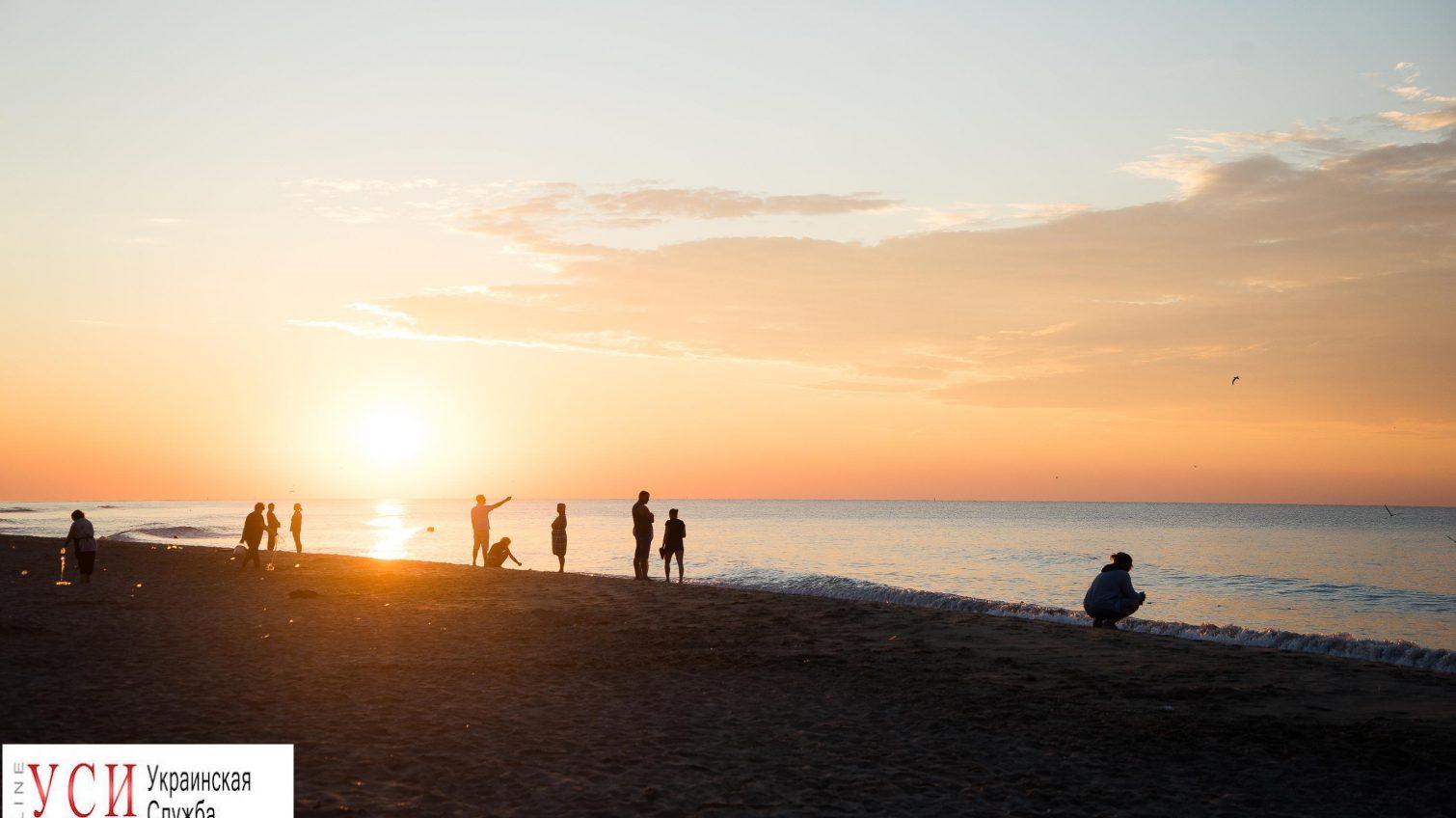 Атмосфера Затоки: кукуруза, великолепные закаты и «волчицы»  (фоторепортаж) «фото»