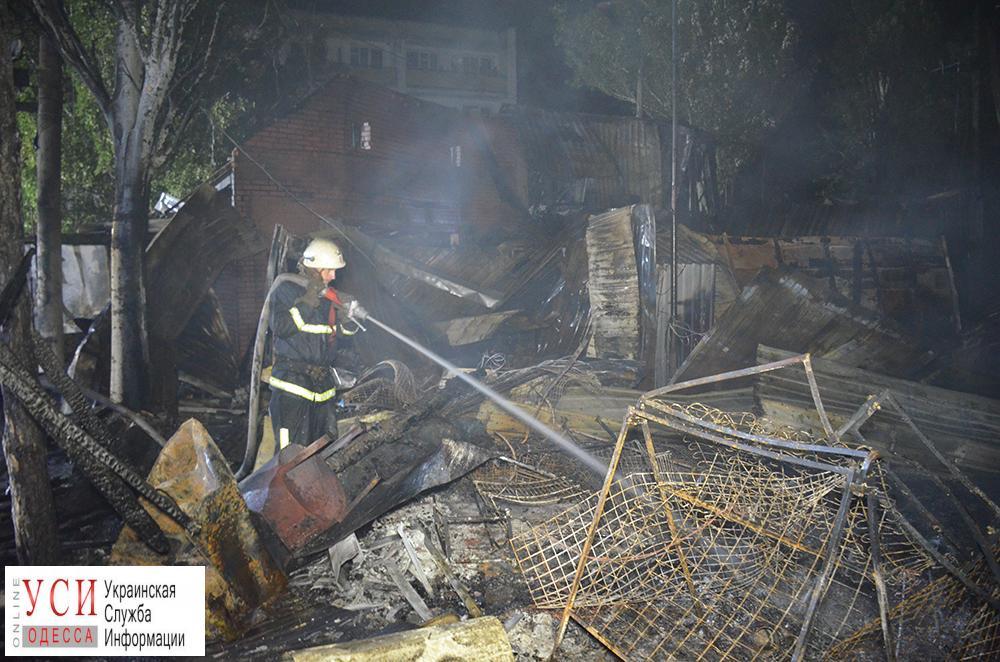Очередной пожар в Коблево: пламя тушили очевидцы (фото) «фото»