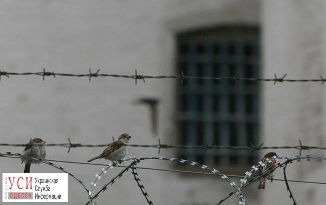 Подозреваемого в жестоком обращении с животными посадили в СИЗО: впервые в истории Украины (фото) «фото»