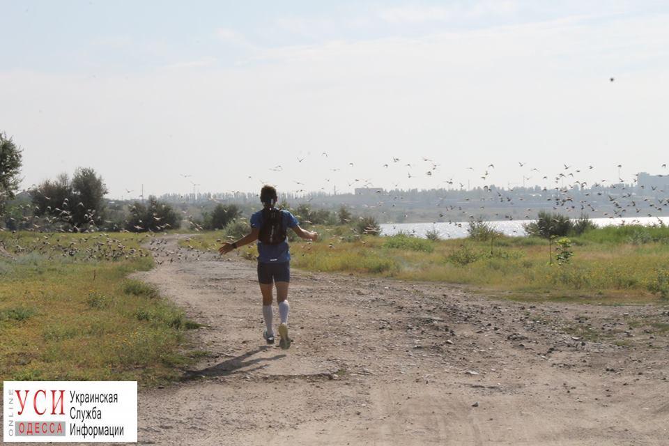 Николаевский спортсмен бежит в Одессу 130 километров, чтобы поддержать своего брата «фото»