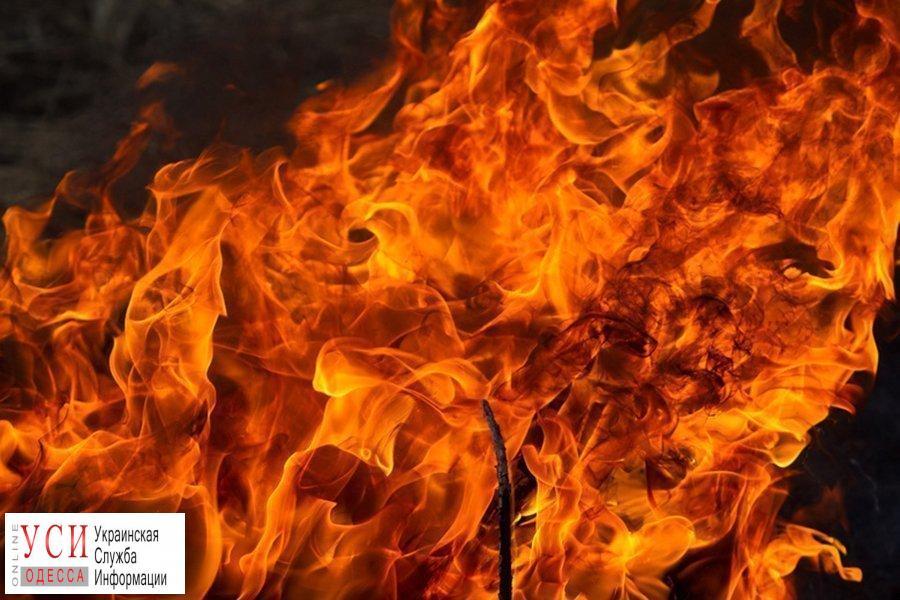 Два человека погибли на пожаре под Одессой «фото»