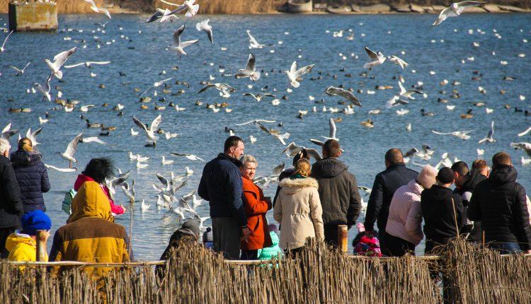 Атмосферный ролик о зимней Одессе: как в мэрии спешили снять видео за 100 тысяч гривен (видео) «фото»