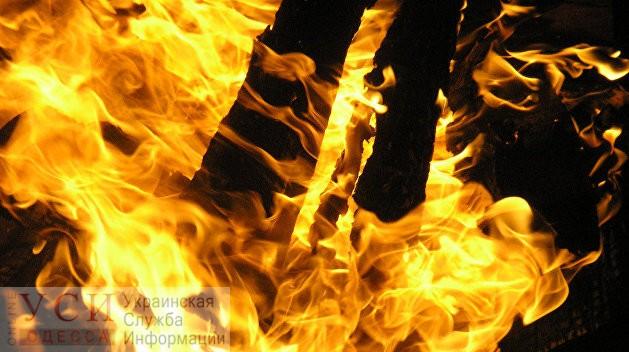 Под Подольском в пожаре погиб пенсионер с инвалидностью «фото»
