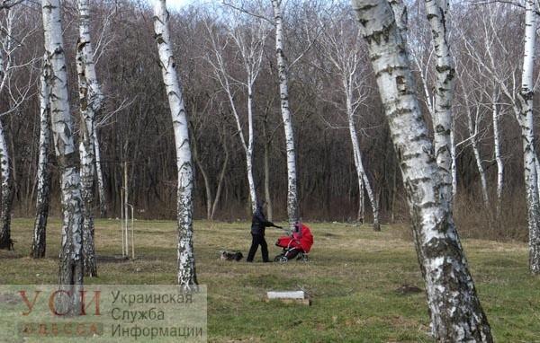 В Одессе девять скверов и парков получат границы: приморских склонов в перечне нет «фото»