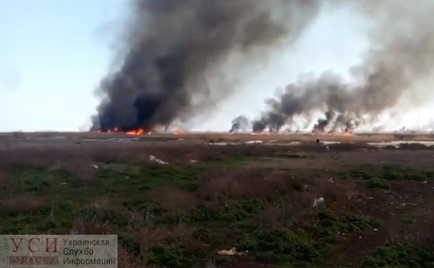 Масштабный пожар в Одесской области: вблизи жилых домов горит камыш (фото, видео) «фото»