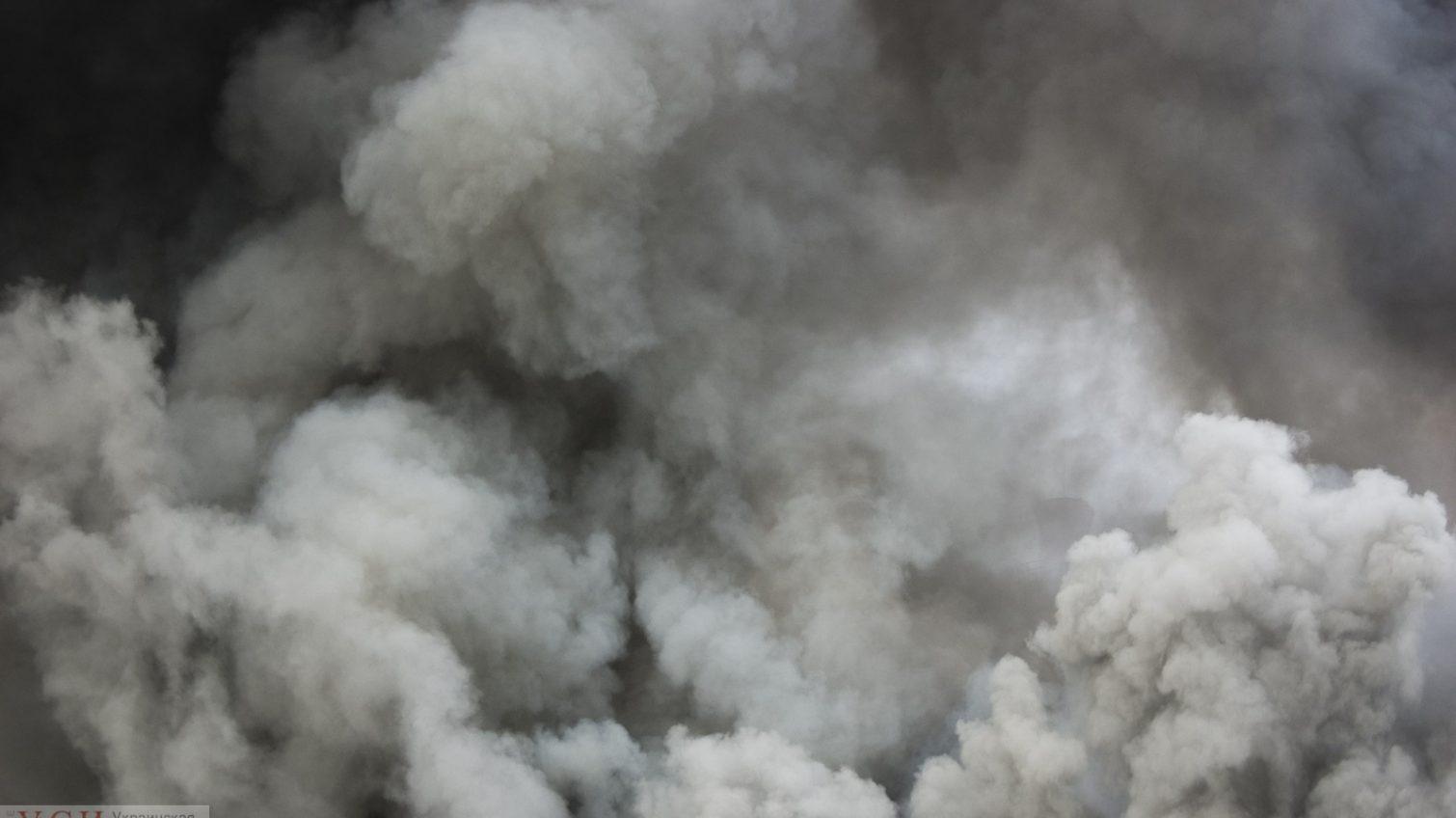 Пожар возле «Ривьеры» одесситы тушат сами (видео) «фото»