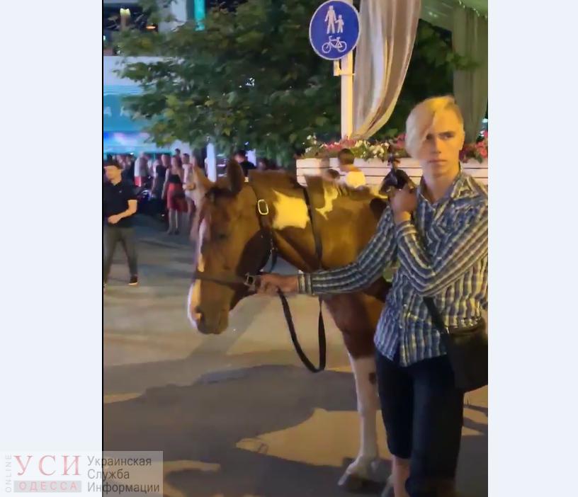 До кровавых ран: в Аркадии продолжают издеваться над лошадьми ради прибыли (фото, видео) «фото»