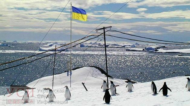 Украинцы в Антарктиде проголосовали, отдав предпочтение трем партиям «фото»