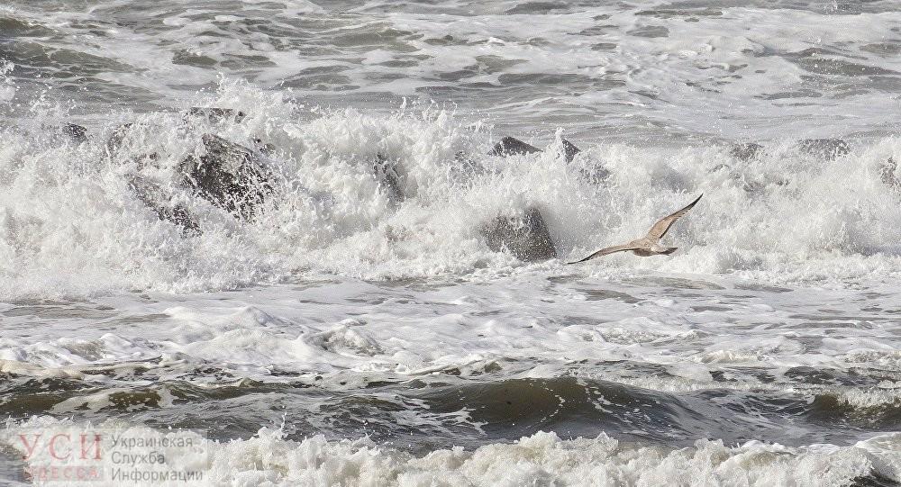 Водолазы ищут ребенка, которого накрыло волной и унесло в море под Одессой «фото»