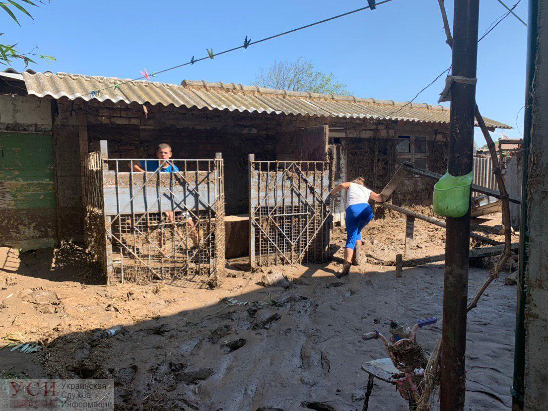 Спасались, выпрыгивая через окна: в селе Молога из-за непогоды люди остались без домов, денег и документов (фото, видео) «фото»