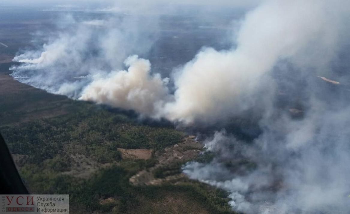 Одесская область: в Лебедевском лесу спасатели тушили масштабный пожар «фото»