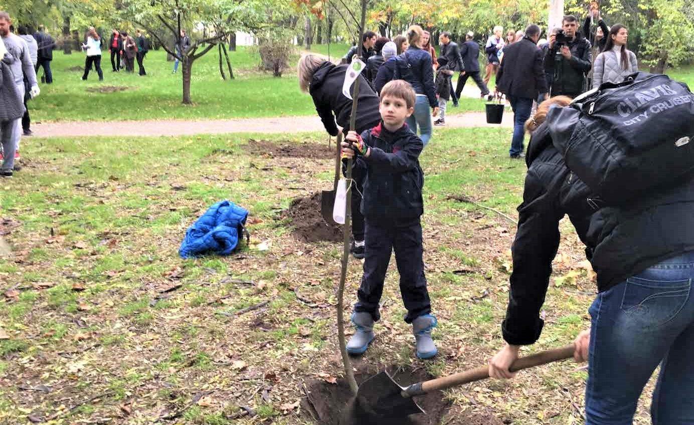 Сакуры, орешники, дубы, рябины и акации: в парках Одессы высадили более 350 деревьев (фото) «фото»