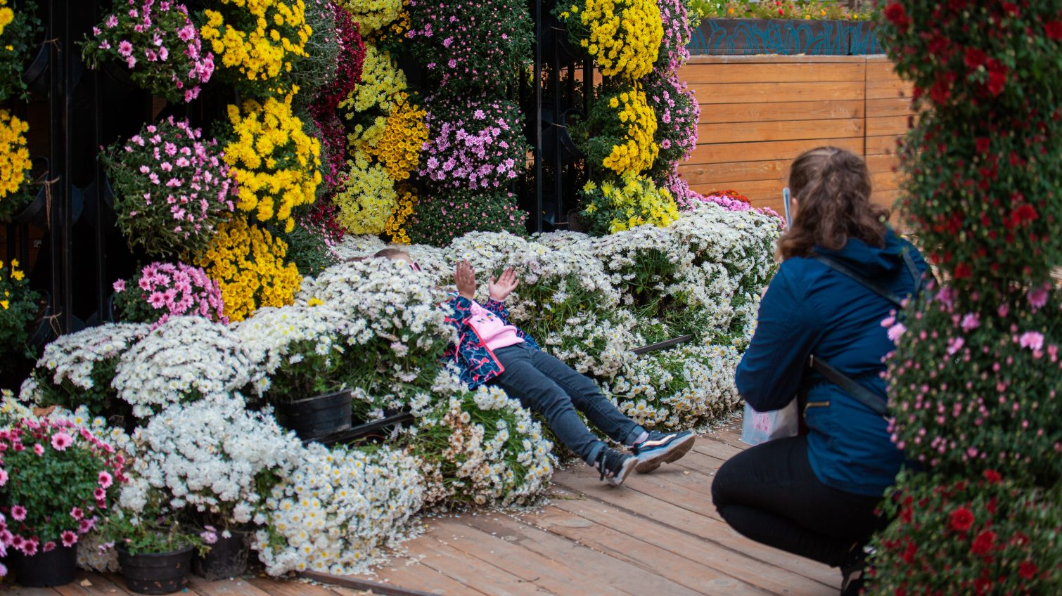 Хризантемы и цветочные инсталляции в осеннем Зеленом театре (фоторепортаж) «фото»