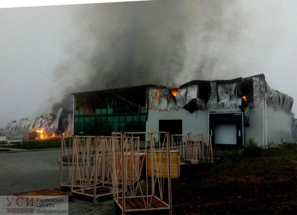 Масштабный пожар: в Раздельнянском районе горит предприятие по переработке чеснока (фото) ОБНОВЛЕНО «фото»