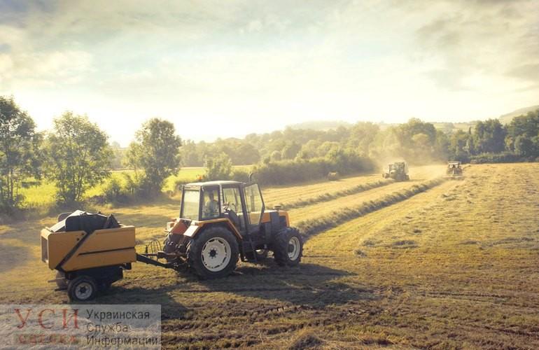 Всех посчитают: в Украине появится электронный реестр фермеров и аграрного бизнеса «фото»