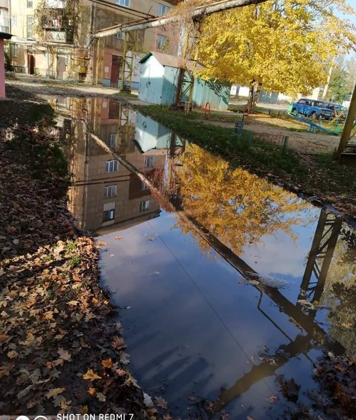 В квартирах сырость, плесень и грибок: подпочвенные воды вот-вот «вынудят» одесситов перекрывать дороги (фото) «фото»