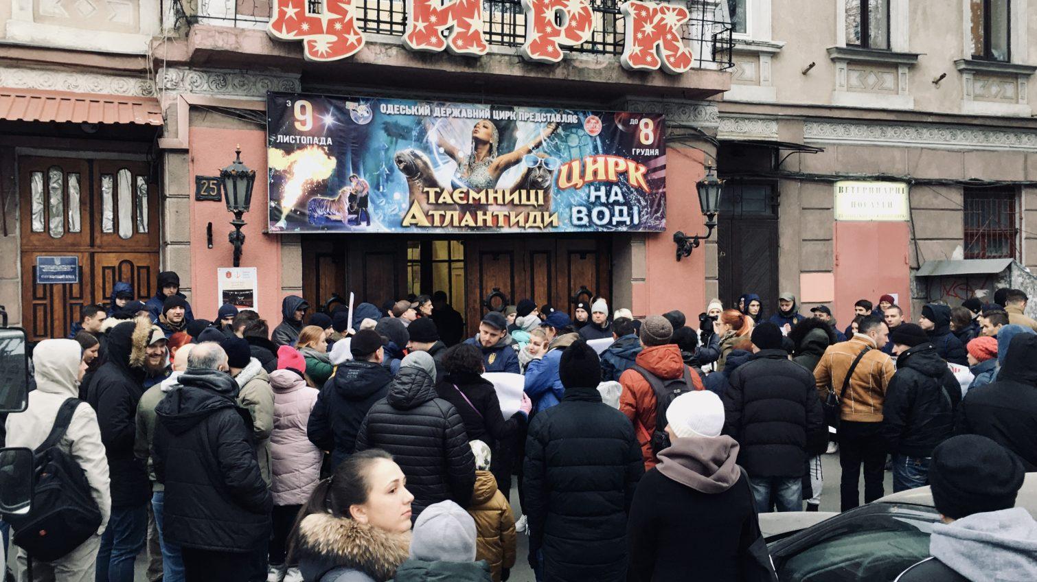«Цирк – иллюзия любви»: в Одессе проходит акция против использования животных (фото, видео) «фото»